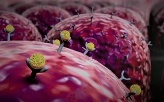 Toll-Like Receptor (TLR) Modulators – Emerging therapy for many indications