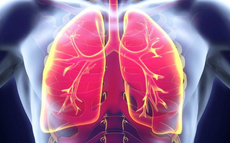 Idiopathic Pulmonary Fibrosis: Recent Scenario