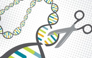Baby gene edits could affect a range of traits