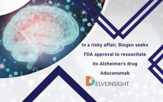In a risky affair, Biogen seeks the FDA approval to revive its Alzheimer's drug Aducanumab