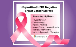 Global HR+/ HER2- Breast Cancer Market Scenario