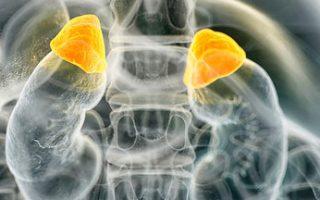 Cushing's Syndrome: Cortisol Plethora