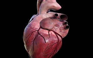 Cholesterol drug Praluent successful in reducing heart risk in new study