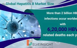 Global Hepatitis B Market Size