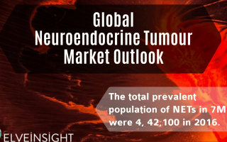 Global Neuroendocrine Tumor Market Outlook