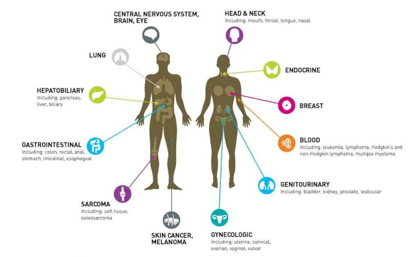 Statistical Insight on Some Common Cancers