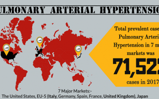 Pulmonary Arterial Hypertension Therapies
