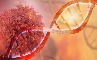 Highly mutated cancers respond better to immune therapy