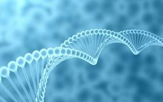 Genetics Biomarker found by a group of Researchers for Cancer Patient Prognosis