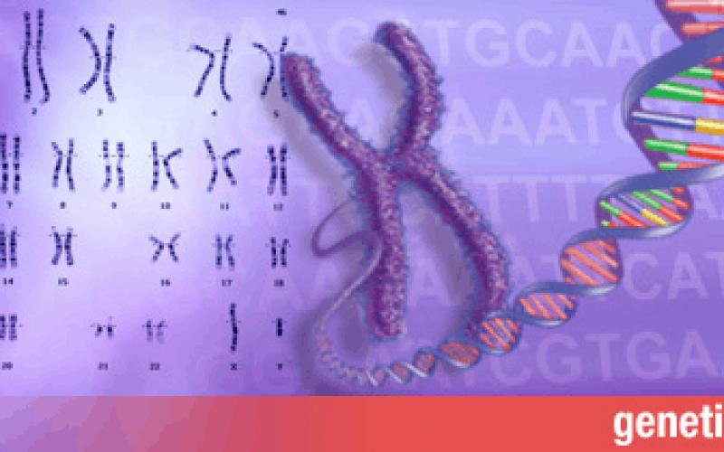 Do we need to revise human genetics?