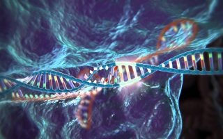 Snippet: The Curious Case of CRISPR Technology
