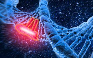 Snippet : Genetic Mutation