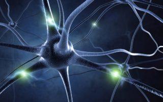 Chronic Inflammatory Demyelinating Polyneuropathy – lack of Effective treatment