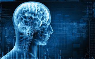 Neuroscience Highlights – 17/07/2018