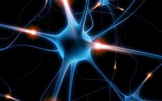 Spinal Muscular Atrophy: Recent developments & emerging therapies