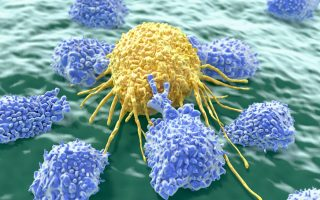 Natural Killer Cell Therapies: An Emerging Cellular Therapy