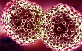 Natural Killer Cell Therapies– Advancing technology increasing competition among the companies