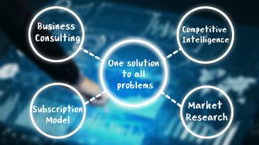 DelveInsight business solutions